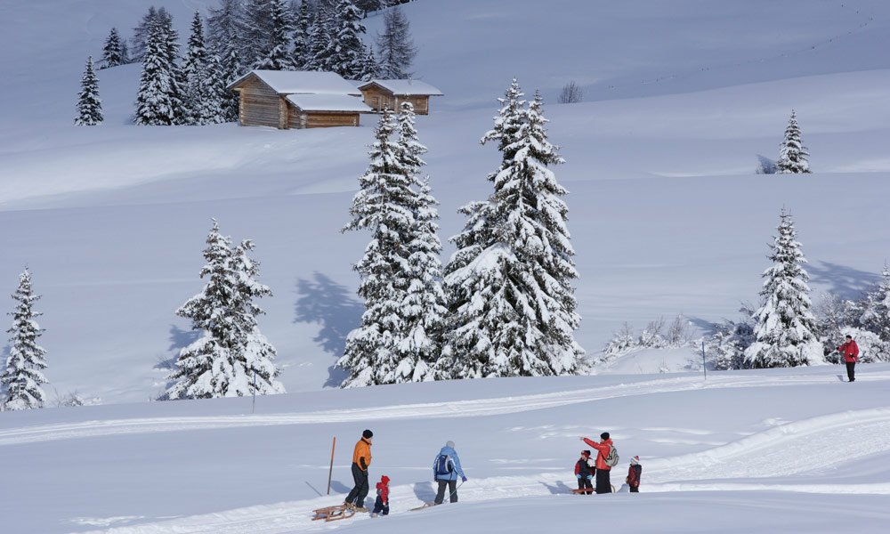 Vacanze invernali all'insegna di escursioni, gite in slittino e tanto relax